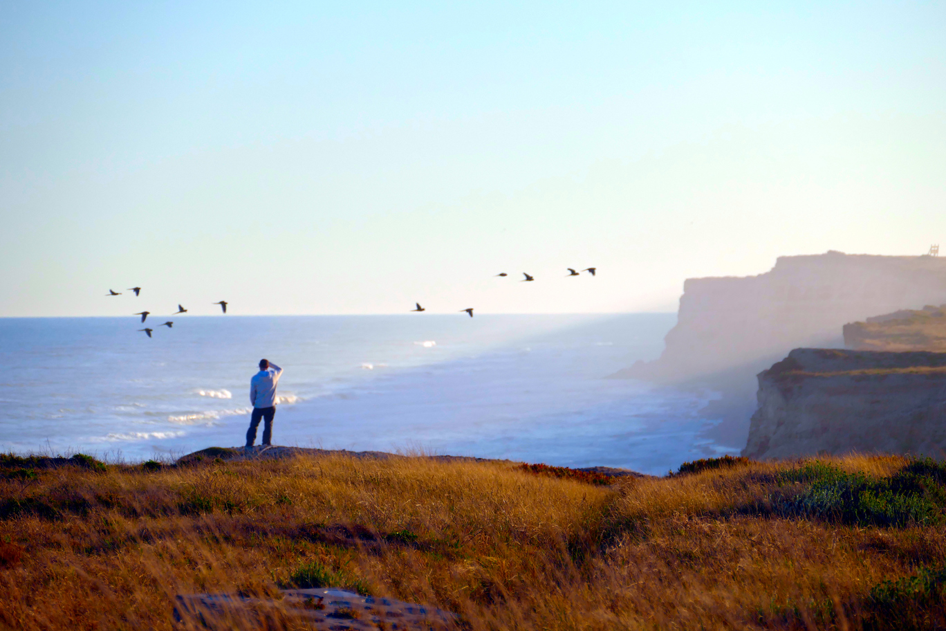 Alwin on the Argentinian coast watching birds overlanding holiday